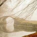misty-150x150