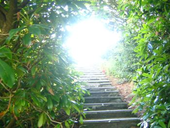 steps-to-enlightenment-2