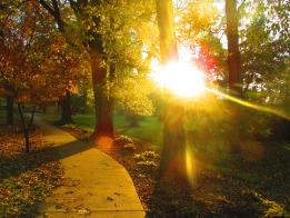 A Fall Day Walk – Photo by PocahontasBrandy.
